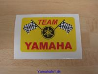 TEAM Yamaha